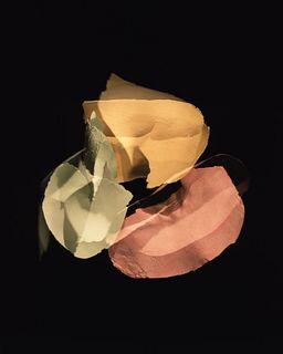 Sydney King (b. 1995), Entanglement VI