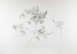 ANTONIO LÓPEZ GARCÍA (Tomelloso, Ciudad Real, 1936). Quinces and Rose, from the Olympic Centennial Suite. Lithograph on 270g Vélin d'Arches paper, 109