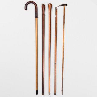 Group of Five Walking Sticks