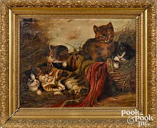 American oil on board of five cats, late 19th c.
