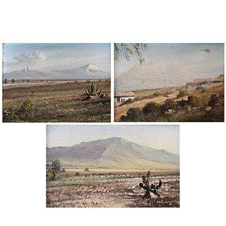 CARLOS PELESTOR, Sin título, Firmados, Óleos sobre masonite, 14 x 20 cm, 14 x 20 cm y 9 x 14 cm, Piezas: 3