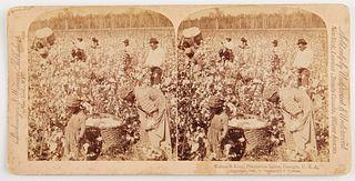 Stereoview of Georgia Plantation Scene 1895
