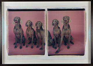 "William Wegman ""3=5"" Dogs Photograph Diptych"