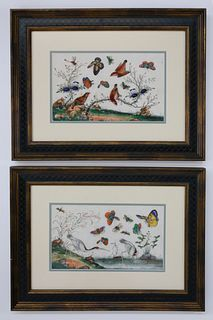 """Pair of Chinese Export Watercolors on Pith Paper """"Birds and Butterflies Amongst Foliage"""", circa 1850"""