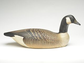 Canada goose, Ward Brothers, Crisfield, Maryland.