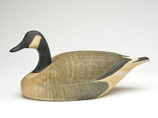 "Canada goose, Don R. ""Doc"" Gearhart, Tulsa, Oklahoma."