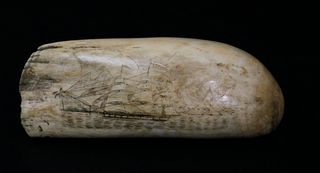 Antique Scrimshaw Whale Tooth, 1sthalf of the 19thCentury