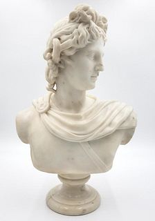 Carved Marble Bust of Apollo Belvedere