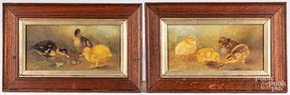 Pair of English oil on canvas chick scenes