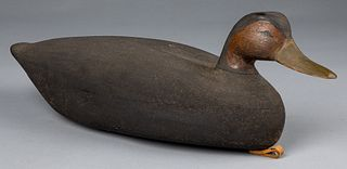 Carved and painted black duck decoy, mid 20th c.