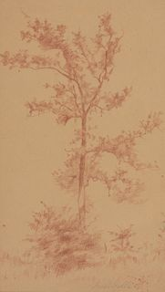 Joseph Stella - Tree, 1900