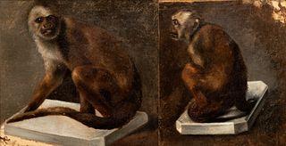 Attr. to Rosa Bonheur - Study of Monkeys