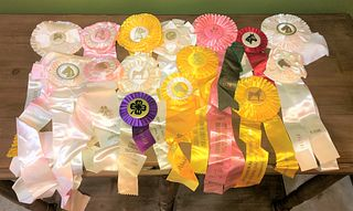 Collection Vintage Horse Ribbons used on movie set