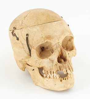 Human Medical/Dental Skull, 20th c., with spring hinges to the mandible, hook and eye connections for holding observation division points together, H.
