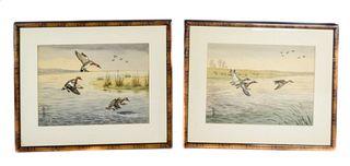 Pair of Boris Riab Waterfowl Watercolors