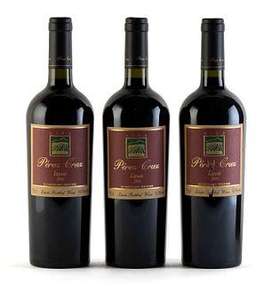 Three Pérez Cruz Liguai bottles, vintage 2005. Category: red wine. DO. Maipo Valley, Paine (Chile). Level: A. 75 cl.