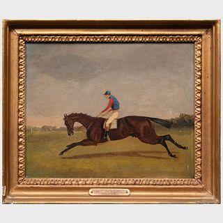 "Samuel Henry Alken (1810-1894): Mr. S. Nichols' Bay Colt ""Newminster"" with Simon Templeman Up"