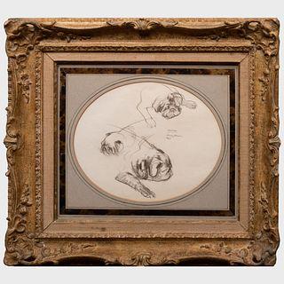 Henry Koehler (1927-2018): Study for the Duke of Windsor's Pug Minoru