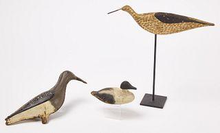 Shorebird - Mini Eider and Tinnie