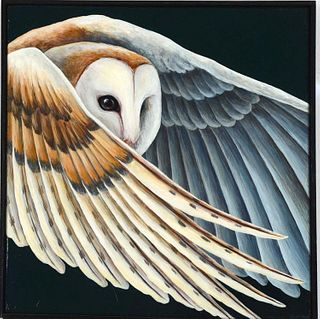 LINDSAY NYGAARD, Barn Owl in Flight