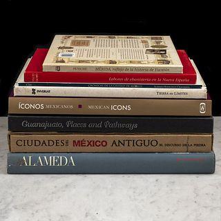 Libros sobre México. Crónicas de la Ciudad de México / Guanajuato, Places and Pathways / Alameda. Piezas: 8.