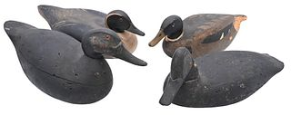 Four Duck Decoys to include early black duck probably New Jersey; Wildfowler Pintail Drake Old Saybrook Factory nicely mellowed with original paint; M