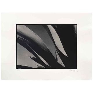 GABRIEL FIGUEROA, Bramadero, 1946, Firmada y fechada 90, Fotoserigrafía 8/300, 56 x 76.5 cm, con sello. | GABRIEL FIGUEROA, Bramadero, 1946, Signed an