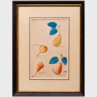 German School: Apples and Pears: Five Watercolors
