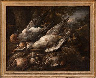 "Italian school; 17th century.  ""Still life of birds"".  Oil on canvas. Relined"