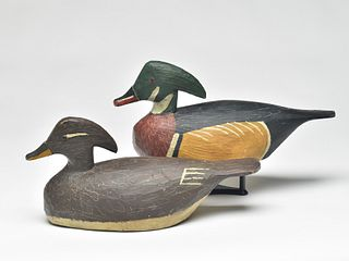 Rare and important pair of wood ducks, Miles Hancock, Chincoteague, Virginia, 2nd quarter 20th century.