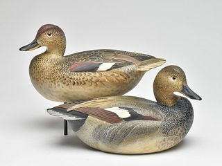 Exceptional pair of gadwall, Ward Brothers, Crisfield, Maryland.
