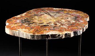 Triassic Arizonan Petrified Wood Table w/ Iron Legs