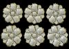 Set of Six Limoges Oyster Plates