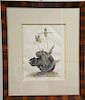 Mark Catesby (1679-1749),  pair of hand colored copper plate engravings of animals,  (1) Vulpis Cinereus, The Gray Fox T78;  (2) Sci...