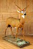 CAST IRON DEER GARDEN SCULPTURE