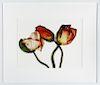 """Irving Penn """"Iceland Poppy"""" Pigment Print 2006"""