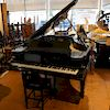 Steinway & Sons Grand Piano Model #101600, Model A