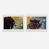 Kiki Smith, Untitled (Feathers, Birds) (two works)