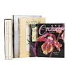 Books on Orchids. Orchids: Wonders of Nature / Orchids of Asia / Orchids from the Botanical Register... Pieces: 6.