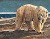 Luke Frazier  (American, b. 1970) Polar Strolled