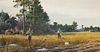 Ogden M. Pleissner (1905-1983)  Quail Hunting