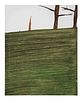 Howard Fonda (American, b. 1943) Untitled (Tree), 2005