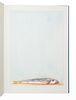 [FINE PRESS & LIVRE D'ARTISTE]. -- [ARION PRESS]. THIEBAUD, Wayne (b. 1920), illustrator. -- BRAUTIGAN, Richard (1935-1984). Trout Fishing in America.