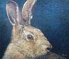 "Keith Bowen (B. 1950) ""European Hare"""