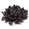 """5"""" Wearable Bloom 02002"""