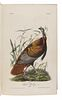 AUDUBON, John James (1785-1851). The Birds of America, from Drawings Made in the United States and their Territories. New York: J.J. Audubon; Philadel