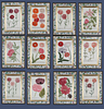 Johann Weinmann: c.18th botanical engravings in decalcomania frames. Price is for the set of 12.