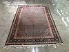 "Floral Persian Rug, 9' 3"" x 6' 7"""