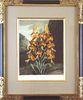 """The Superb Lily.""  - Framed Aquatint"