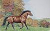 """Peter Barrett (B. 1935) """"Morgan Horse"""""""